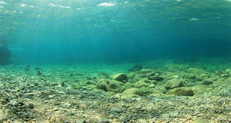 Fuel Source  Hidden  Deep Sea Floor Laboratory