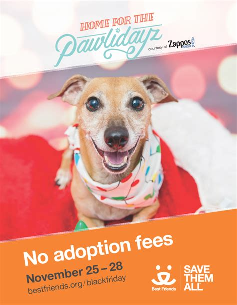 Zappos Offer Letter Home For The Pawlidayz Pet Adoptions
