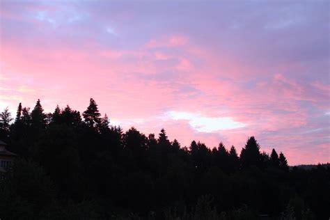 mountains horizon forest sunset dusk  wallpaper