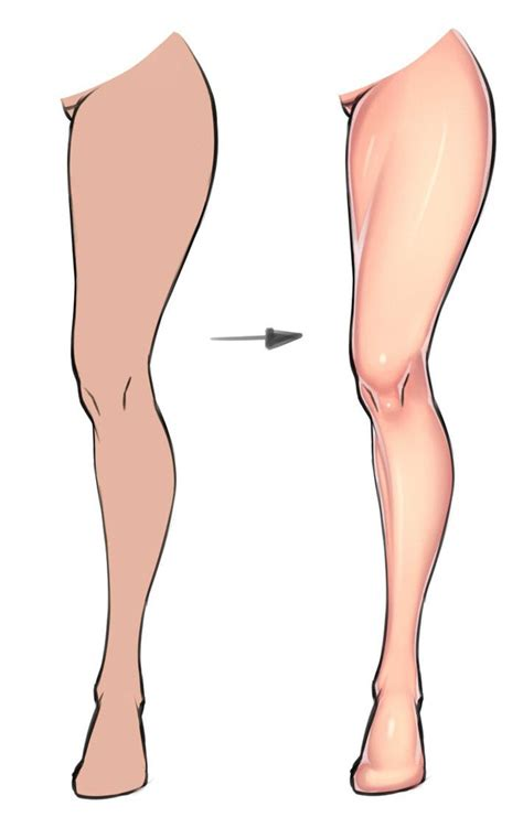 Legs For by 47 Best Images About Drawing Tips The Leg On