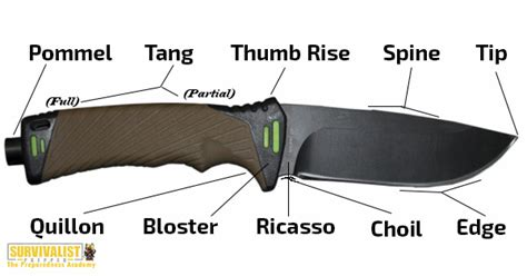 parts of knives how to choose the best survival knife for your needs