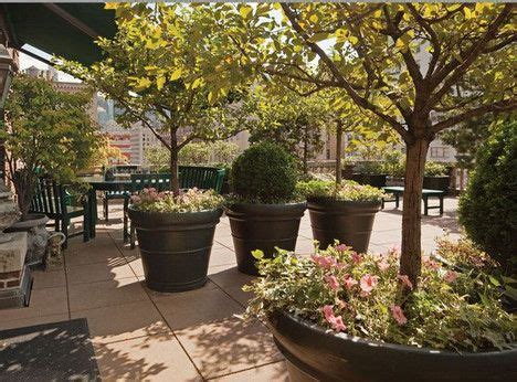 planters for trees gardening tips from the rooftop balconies of new york