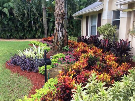 florida backyard landscaping ideas 25 best ideas about florida landscaping on