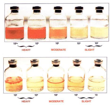 what color is diesel liqui cult diesel fuel test kits