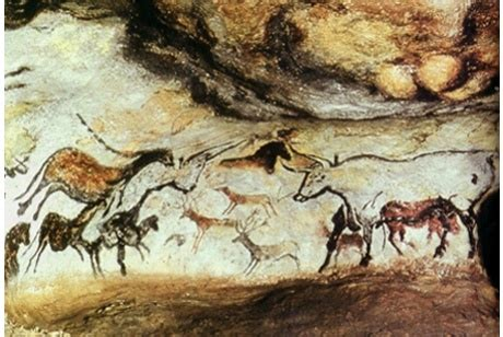 provincia di livorno ufficio caccia notti dell archeologia al museo di storia naturale