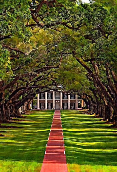 oak alley plantation new orleans plantation country 19 best oak alley plantation images on pinterest