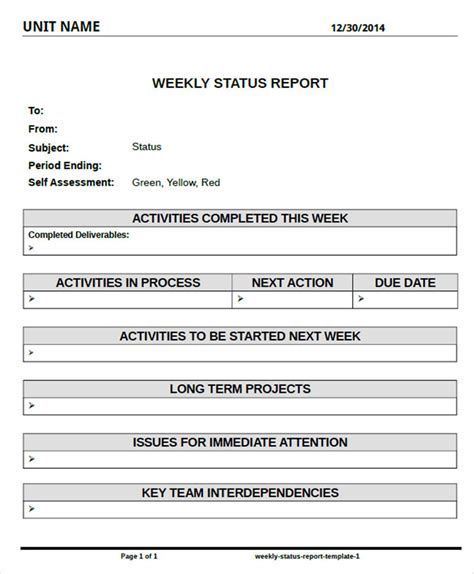 Weekly Project Report Template