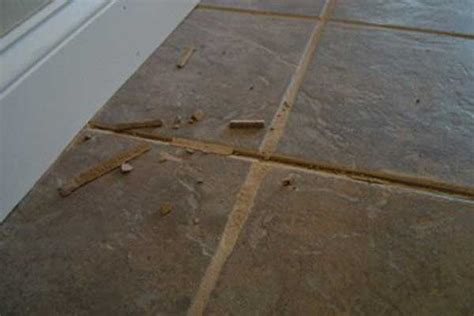 How To Repair Grout In Kitchen Tile by Tile Grout Cleaning Contour Cleaning