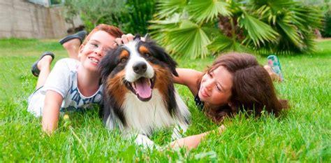 imagenes de niños jugando con animales tener mascota potencia la autoestima y el desarrollo de