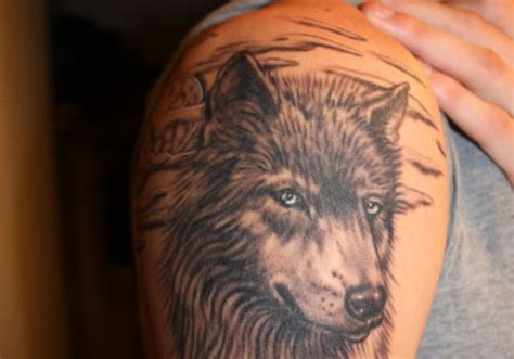 pike tattoo designs collection of 25 lone wolf