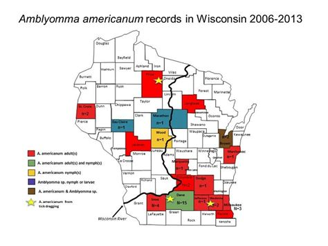 Records In Wisconsin Amblyomma Americanum Lone Tick Wisconsin Ticks And Tick Borne Diseases