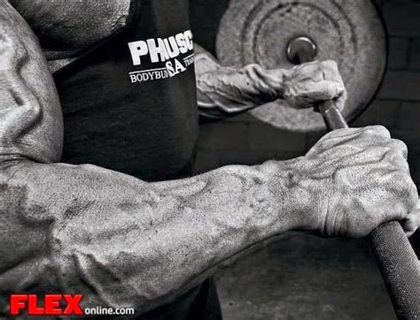 home best forearms workout get bigger forearms easly