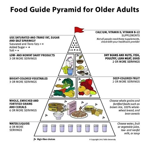 for healthy aging a guide to lifelong well being books elderly pyramid