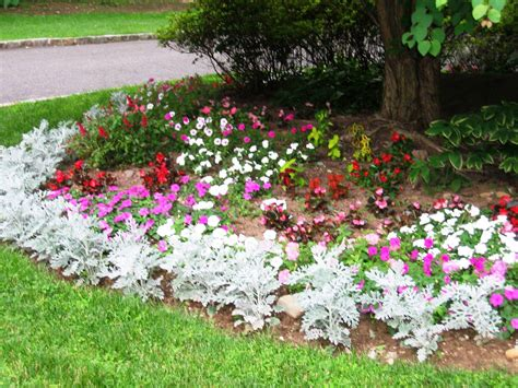flower garden ideas for beginners garden post