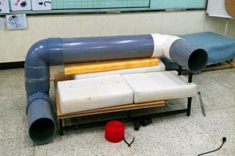 cat tunnel sofa cat tunnel sofa gives cats a place to play when the mice