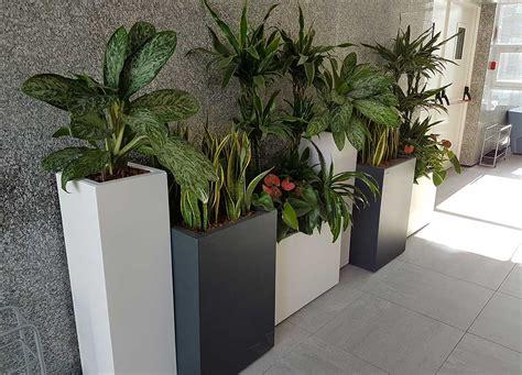 piante finte da giardino piante finte da giardino piante artificiali pianta finta