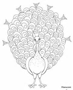 peacock coloring page free coloring pages of peacock