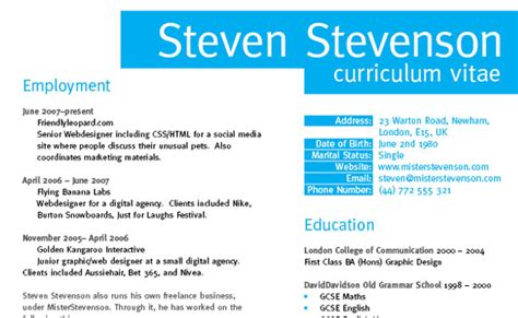 How To Make A Professional Cv Exles by Designer Cv Layout