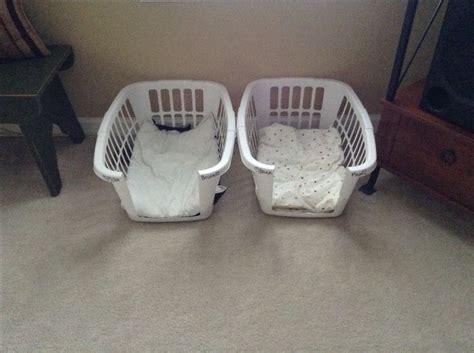homemade dog bed homemade dog bed animals pets pinterest