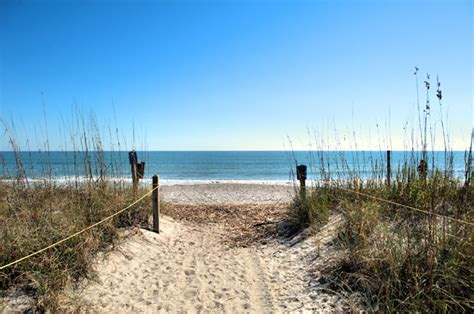 Sc Search Image Gallery Edisto