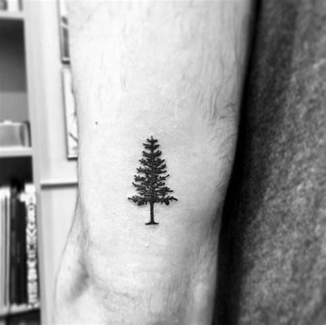 small mens tattoo designs 60 small tree tattoos for masculine design ideas