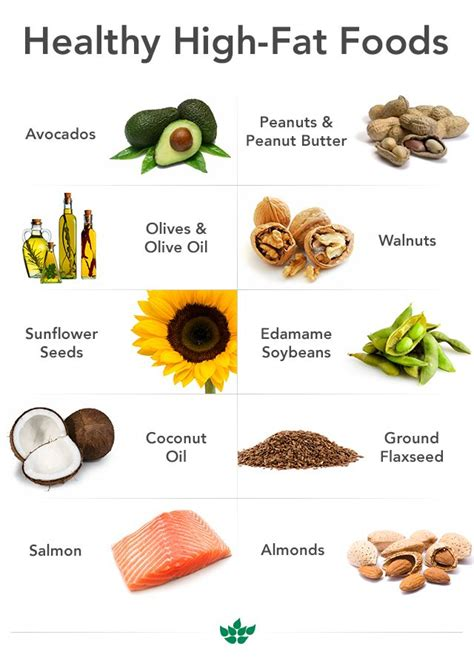 The Best Diet Fats And by Best 25 High Foods Ideas On High Keto