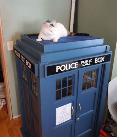 Diy Kitty Tardis Playhouse For Cats Who Love The Doctor Tardis Cat House Plans
