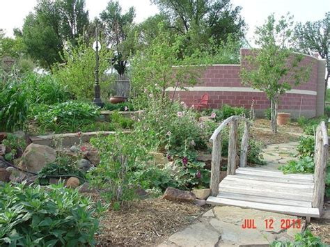 Amarillo Botanical Gardens Amarillo Tx Strawberries Lemongrass And Borage Picture Of Amarillo Botanical Gardens Amarillo Tripadvisor