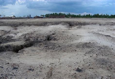 wilmar berupaya lanjutkan pembukaan lahan saat jalani