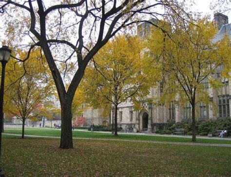 Yale Mba Questions by Yale Som Recommendation Questions Admit 1 Mba