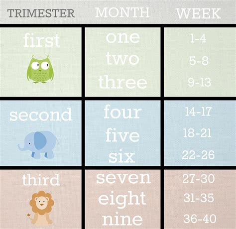 Calendar Calculator By Weeks Weeks To Months Pregnancy Chart Pregnancy Calculator How