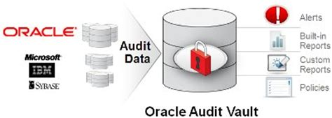 V Audit Oracle by Toolswatch Org The Hackers Arsenal Tools Portal 187 Oracle