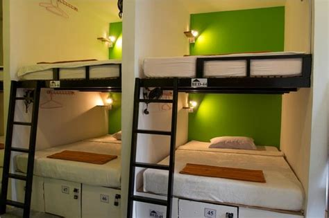 Travel Bunk Beds The White Room With 10 Bunk Beds Women Only Picture Of