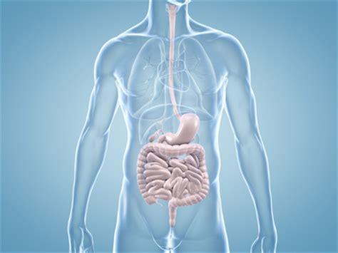 magenschmerzen blut im stuhl magen darm blutung ursachen behandlung komplikation