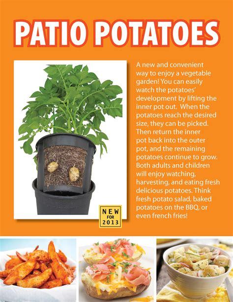grow potatoes   pot edible gardens fruit garden