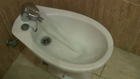 meaning of bidet bidet definition meaning