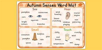 autumn senses word mat seasons weather visual aid