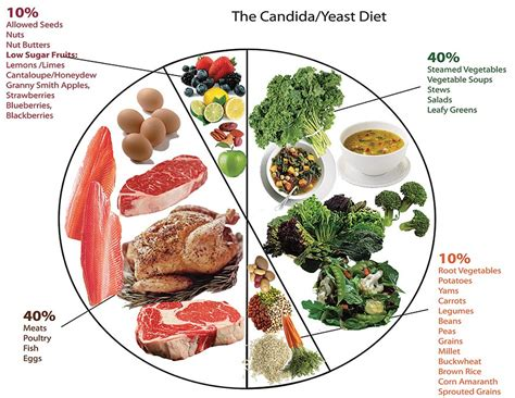 candida diet snacks anti candida diet