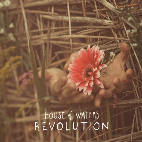 revolution house music revolution house of waters