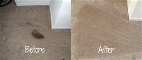 how to get vomit out of couch cleaning vomit stains from carpet tips home remedies