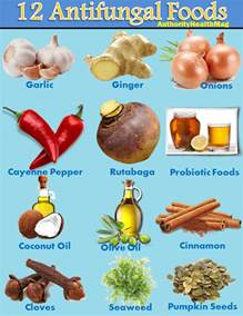12 antifungal foods best anti candida diet food list