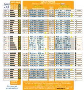 fish calendar lunar blank calendar design 2017
