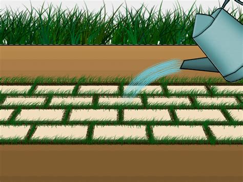 Nice Ideas For Low Maintenance Landscaping #7: Grow-Grass-Between-Pavers-Step-6.jpg