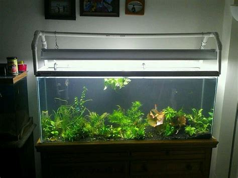 aquarium diy projects and creative diy aquarium just craft diy projects