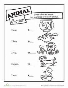 animal verbs worksheet education