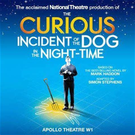 curious incident of the in the nighttime review the curious incident of the in the time theatre review pocket size theatre