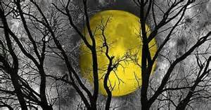 Black And White Bedrooms With A Splash Of Color Black White Yellow Moon Tree Wall Art Home Decor Matted