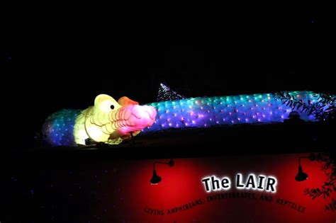 zoo lights zoo discount code discount tickets to la zoo lights socal field trips