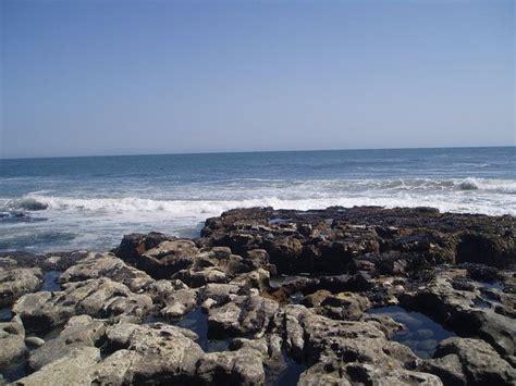tide santa cruz tide pools natural bridges santa cruz california out