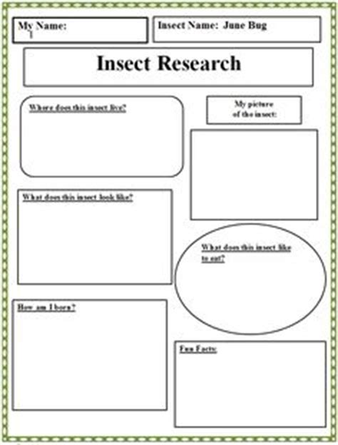 Animal Research Paper For 4th Grade by Burmese Cat Computer Science Burmese Cats And Animals